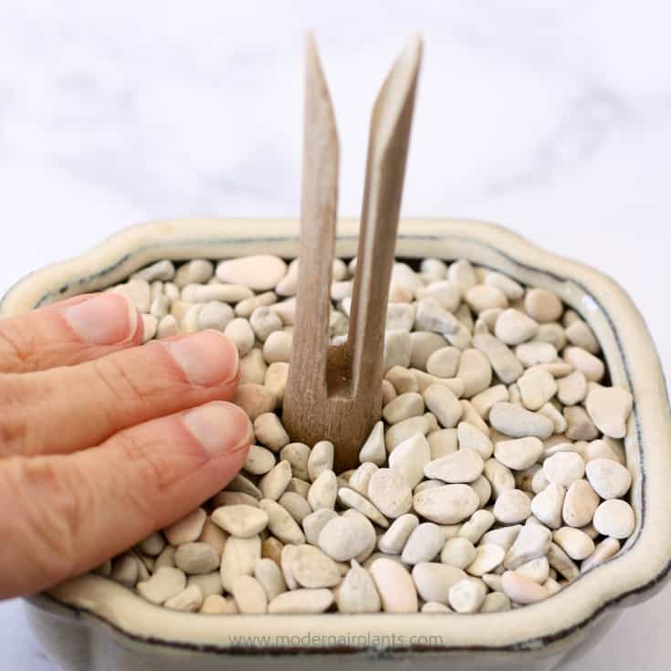 Firmly press down on the rocks - clothespins for air plant display