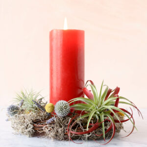 red candle air plant wreath