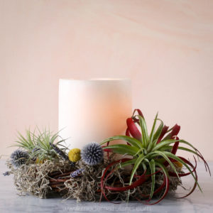 white candle air plant wreath