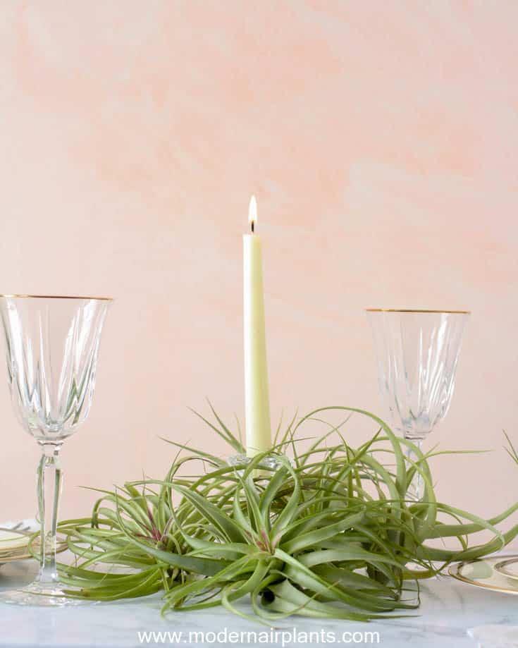 abdita - romantic table accent