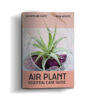 AIR PLANTS: Essential Care Guide